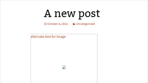 Insertar texto alternativo en las imágenes de los productos