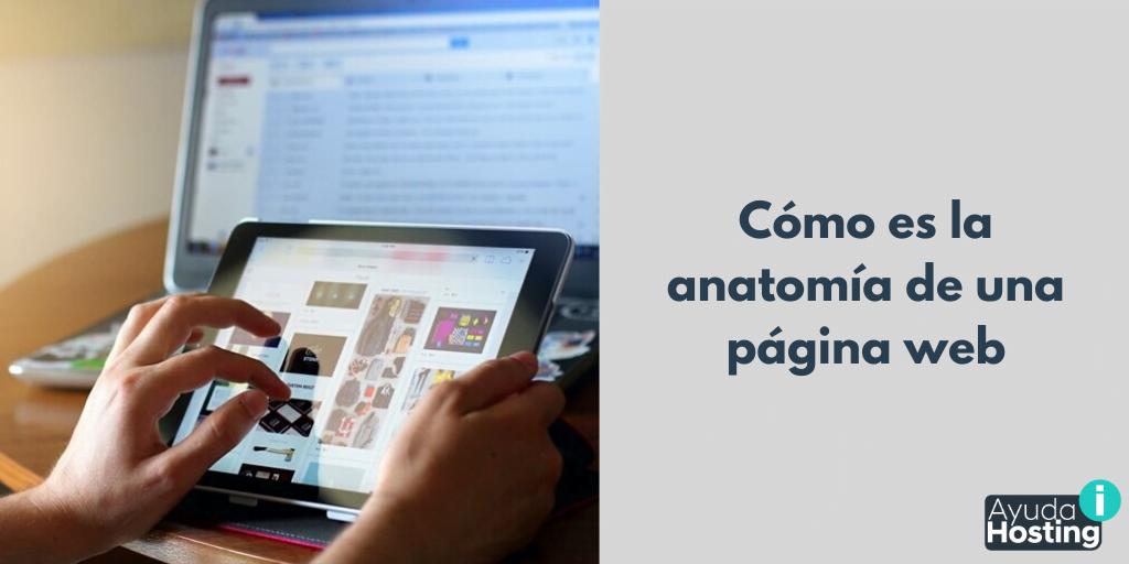 Cómo es la anatomía de una página web